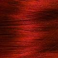 Free Hair Macro Stock Photography - 22584282