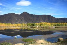 Free Kyi River And Poplar Trees Royalty Free Stock Images - 22580019