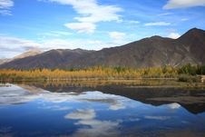 Free Kyi River And Poplar Trees Royalty Free Stock Images - 22580059
