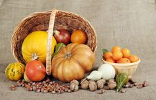 Free Pumpkin Royalty Free Stock Photography - 22584127