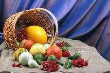 Free Pumpkin Stock Photos - 22584163