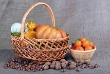 Free Pumpkin Stock Photo - 22584220