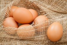 Free Brown Eggs Royalty Free Stock Photo - 22584665