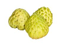 Free Custard-apple Stock Photo - 22586970