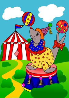 Free Seal The Circus Royalty Free Stock Photos - 22588268