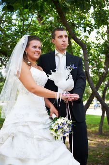 Free Bride And Groom With Pigeons Royalty Free Stock Photography - 22589167
