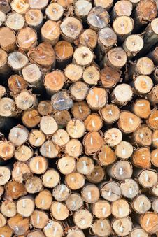 Free Dry Chopped Firewood Logs Stacked Up Royalty Free Stock Images - 22591079