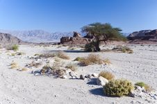 Free Valley Of Timna Park, Eilat, Israel Stock Images - 22593884