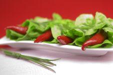 Free Red Chili With Oregano Stock Image - 2260031