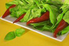 Free Red Chili With Salad Royalty Free Stock Images - 2260229