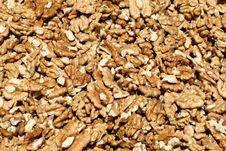 Free Walnuts Stock Photo - 2265480