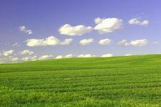 Free Green Field And Blue Sky Stock Image - 2267531