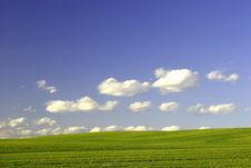 Free Green Field And Blue Sky Royalty Free Stock Image - 2267536