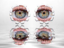 Free Eyes Through Holes Stock Image - 2268141