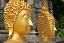 Free Buddhist Statue Head Stock Images - 2269534
