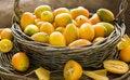 Free Kumquat Still Life Royalty Free Stock Image - 22600616