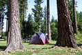 Free Tent Campsite Stock Image - 22607531