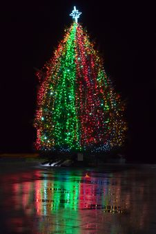 Free Christmas Tree Glowing In A Town Square At Night Stock Image - 22618051