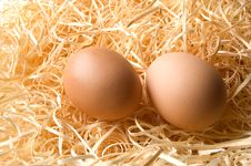 Free Barn Eggs Royalty Free Stock Photo - 22622735