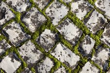 Free Cobble Stone Stock Photography - 22627272