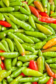Free Closeup Chillies Royalty Free Stock Photography - 22634657