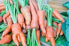 Free Freshly Carrots On The Market Royalty Free Stock Photos - 22634758