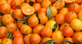Free Clementine Oranges. Stock Photography - 22649652