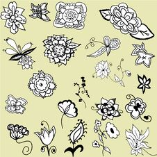 Beautiful Floral Elements Royalty Free Stock Photography
