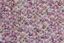Free General Floral Chintz. Stock Images - 22654874