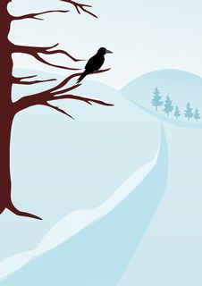 Free WINTER CROW Stock Photos - 22658043