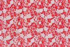 Free Red Flower Pattern. Royalty Free Stock Photography - 22659467