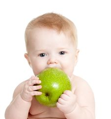Free Baby Boy Eating Green Apple Over White Stock Image - 22665601