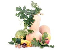 Free Fruits Stock Photo - 22677500