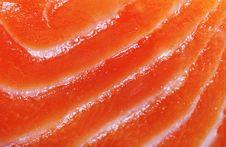 Free Salmon. Royalty Free Stock Image - 22697216
