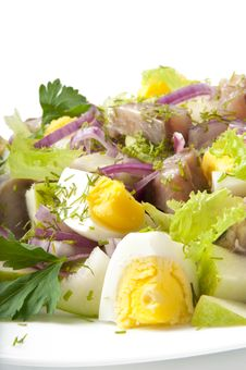 Herring Salad, Apples And Eggs Stock Image