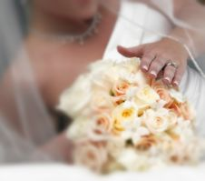 Free Wedding Day Stock Photo - 2270570