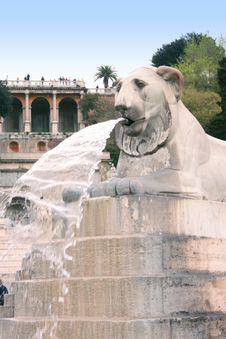 Lion Fountain  Jet In Roma Royalty Free Stock Image