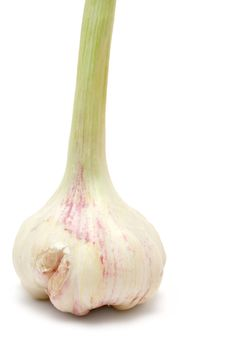Free Standing Garlic Bulb Royalty Free Stock Photography - 2273937