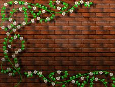 Free Ivy_1 Stock Photos - 2275473