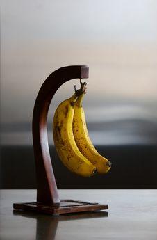 Free Bananas On Hanger Royalty Free Stock Photos - 2278168