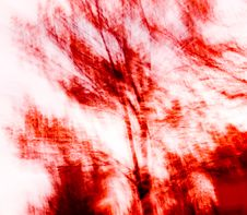 Red Abstract Trees Stock Images
