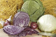 Three Cabbage Heads Stock Image