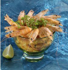 Free Shrimp Cocktail Stock Images - 2279914