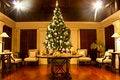 Free Christmas Tree Stock Photo - 22707690