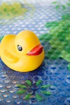 Free Duck Toy For Baby Bath Royalty Free Stock Photography - 22702257