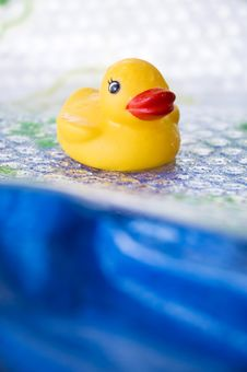 Free Yellow Duck Stock Photos - 22702343