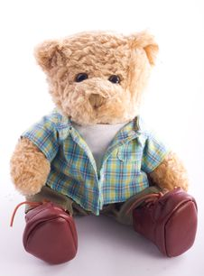 Free Teddy Bear Royalty Free Stock Images - 22709779