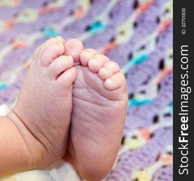 Little Baby Feet