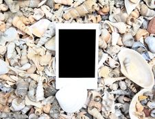 Free Blank Photo Frame On Sea Shell Stock Photos - 22713643