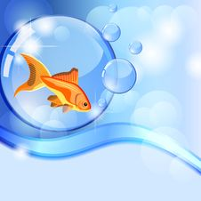 Free Fish In Bubble Royalty Free Stock Photography - 22715877